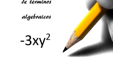 Monomios, binomios, trinomios y polinomios
