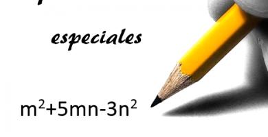 Cuales son los polinomios especiales